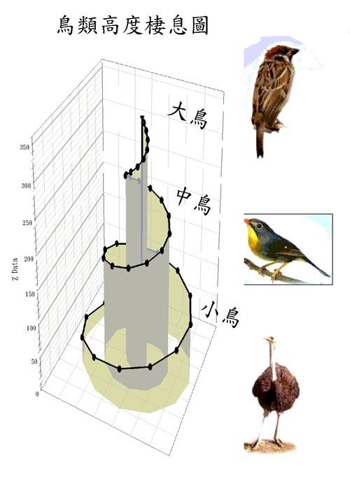 Bird and Tree 鳥類高度棲息圖