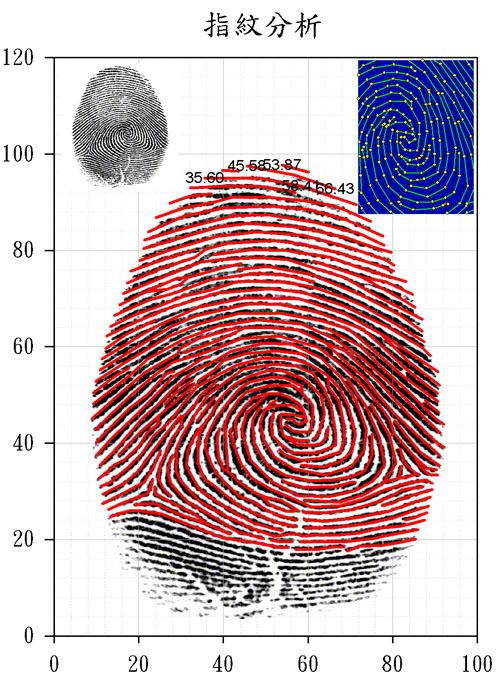 SigmaPlot 指紋分析 可只顯示點 線 點加線 填色 顯示座標 高度技巧 FingerPrint